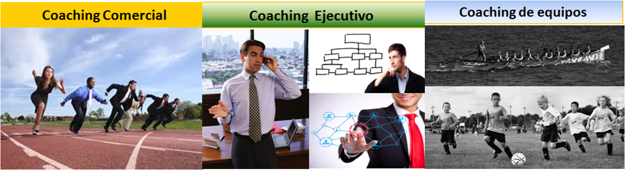 Coaching equipment and commercial ejecutvo
